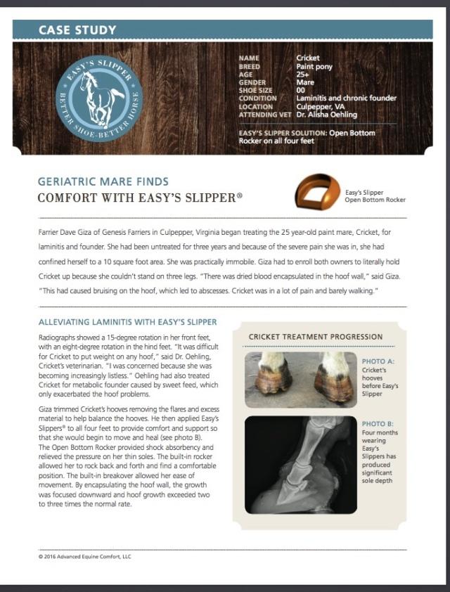 Case Study: Cricket | Genesis Farriers, LLC